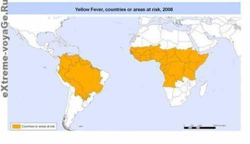 лихорадка денге в странах юго